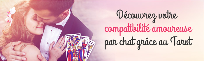 tarot amour par chat